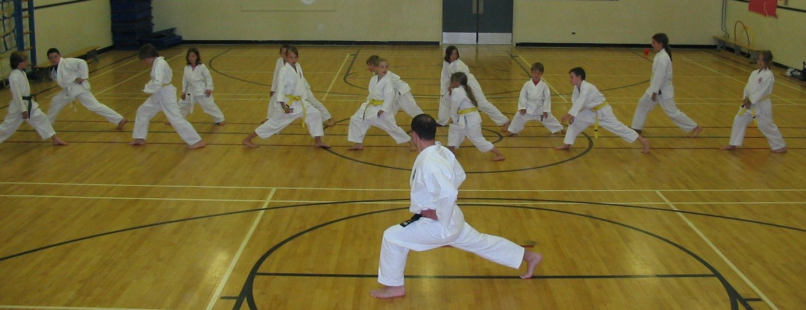 A picture of a karate class